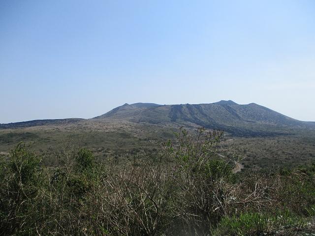 画像9: 【山旅会・登山ガイドこだわりツアー】岡田ガイドからの便り・伊豆大島・三原山ツアーに行ってきました!