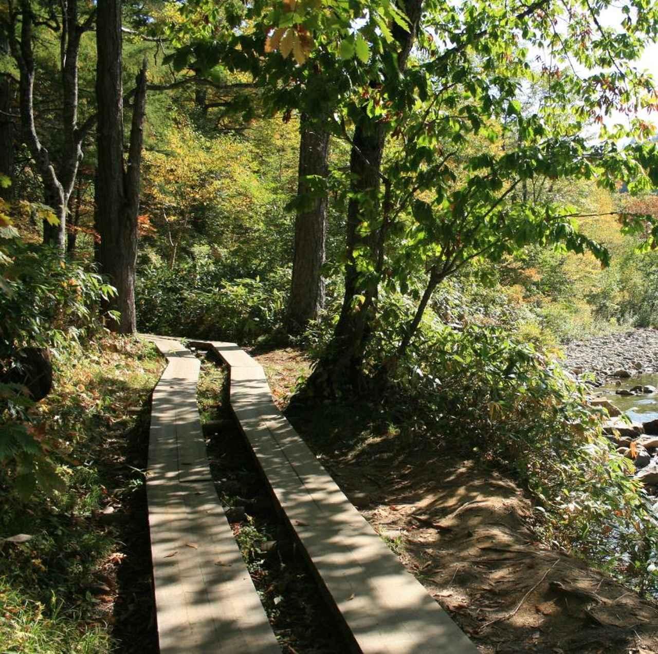 画像: 尾瀬の木道(イメージ)