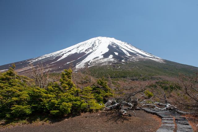 画像: 奥庭から見た富士山 ※富士山は天候により見られない場合があります