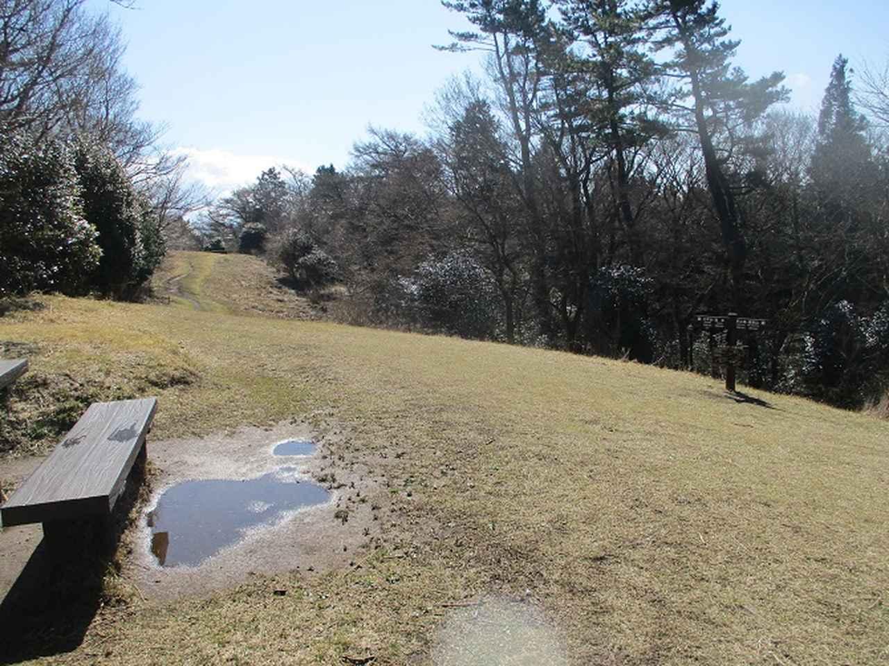 画像6: 4月の山旅会 「湯坂路」 の直前下見報告です!