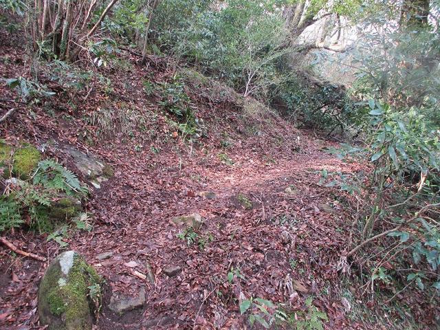 画像1: 4月の山旅会 「湯坂路」 の直前下見報告です!