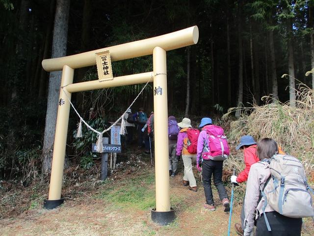 画像2: 4月1日に山旅会「盛金富士」ツアーにいってきました!