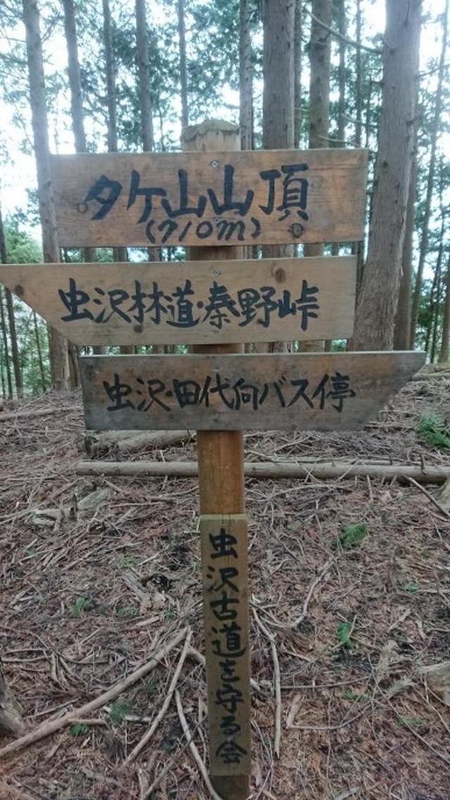 画像6: 3月21日に佐藤たけゆきガイドと、その名も!! たけ山~シダンゴ山 へ行ってきました♪