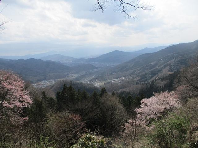 画像11: 3月28日に岡田ガイドのコースで、埼玉県にたたずむ 陣見山 へ行ってきました♪