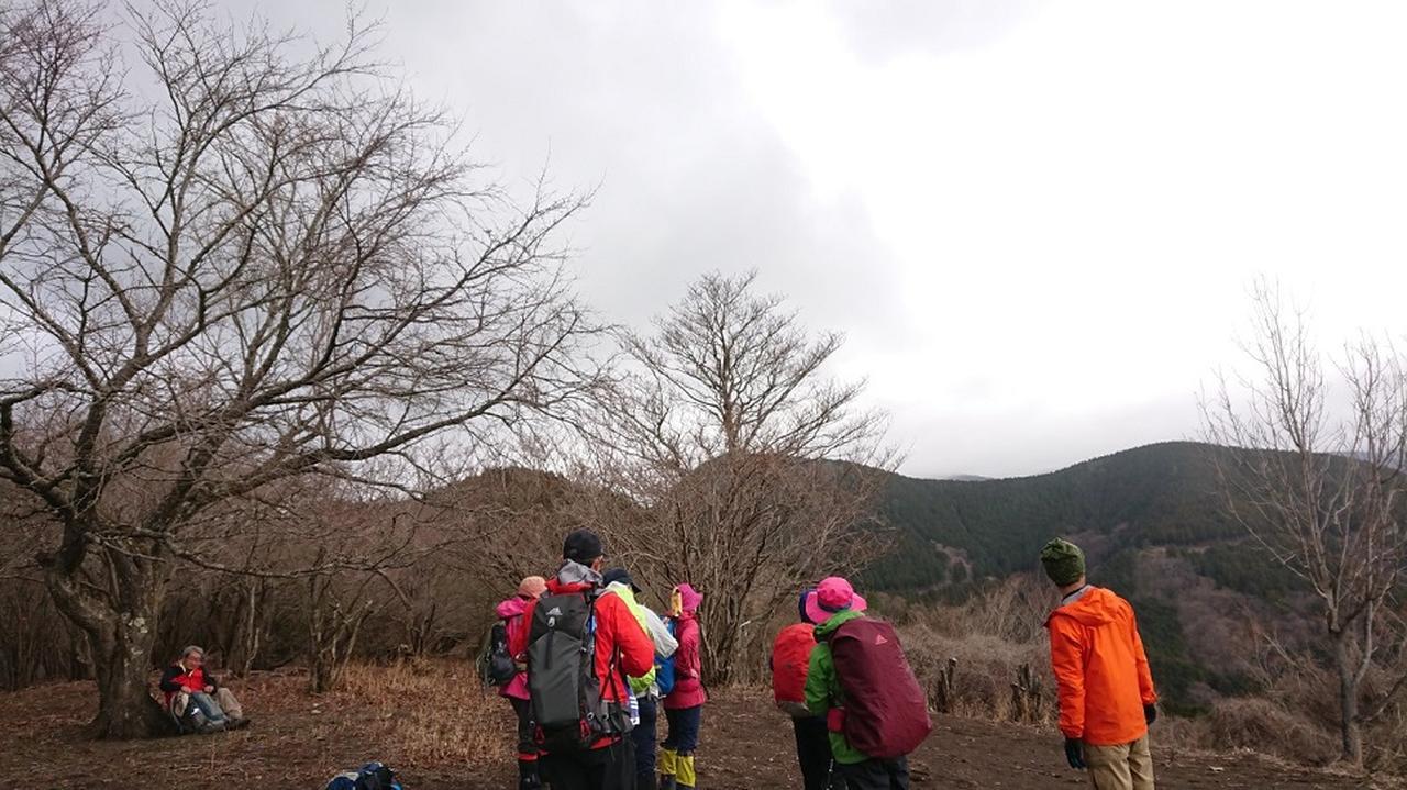 画像5: 3月21日に佐藤たけゆきガイドと、その名も!! たけ山~シダンゴ山 へ行ってきました♪