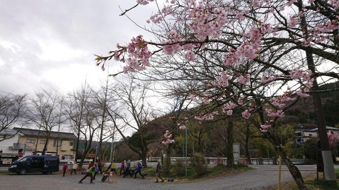 画像13: 3月21日に佐藤たけゆきガイドと、その名も!! たけ山~シダンゴ山 へ行ってきました♪