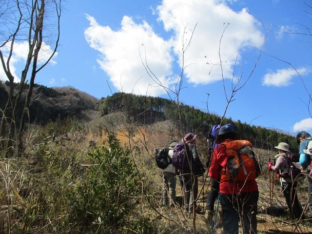 画像5: 4月1日に山旅会「盛金富士」ツアーにいってきました!