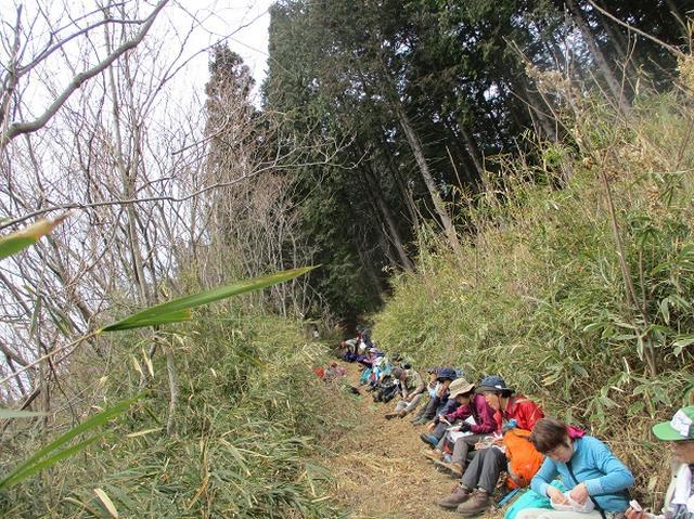 画像9: 3月28日に岡田ガイドのコースで、埼玉県にたたずむ 陣見山 へ行ってきました♪