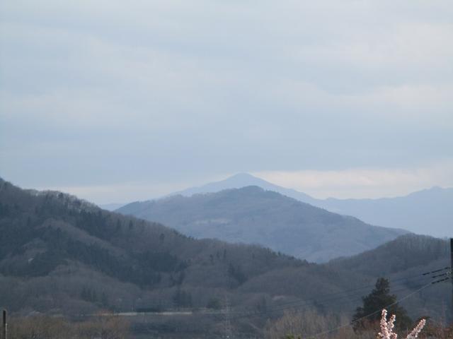 画像13: 3月28日に岡田ガイドのコースで、埼玉県にたたずむ 陣見山 へ行ってきました♪