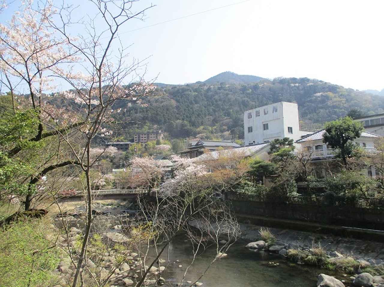 画像1: 4月の山旅会 「天狗岩から要害山」 の直前下見報告です!