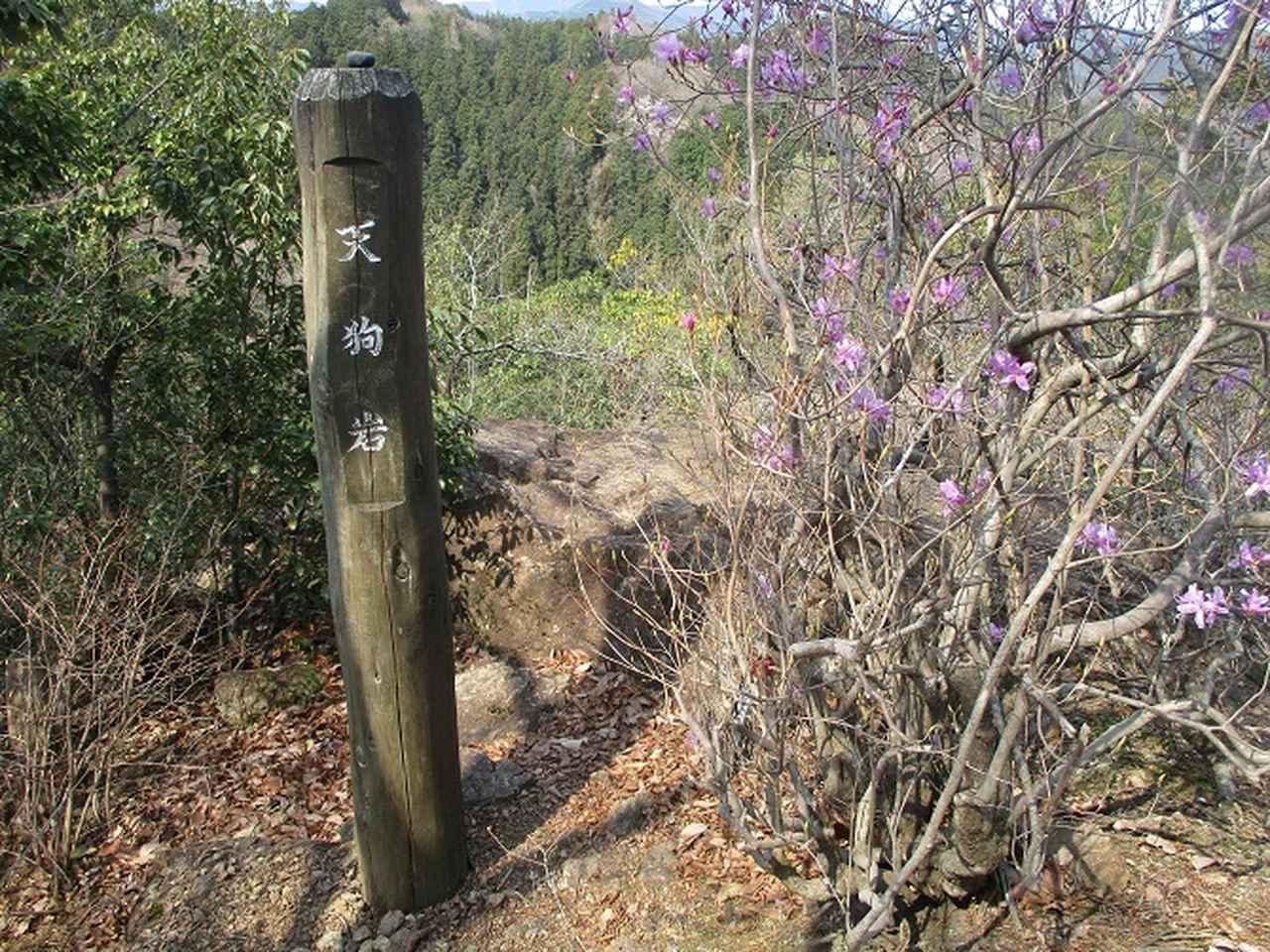 画像6: 4月の山旅会 「天狗岩から要害山」 の直前下見報告です!