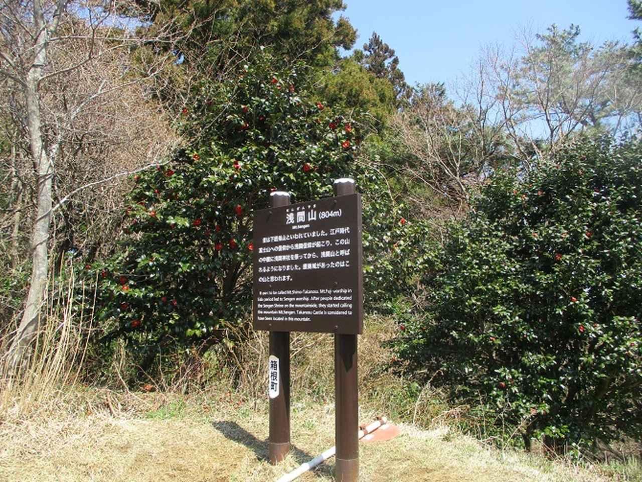 画像4: 4月6日に山旅会 「箱根・湯坂路」 ツアーに行ってきました!