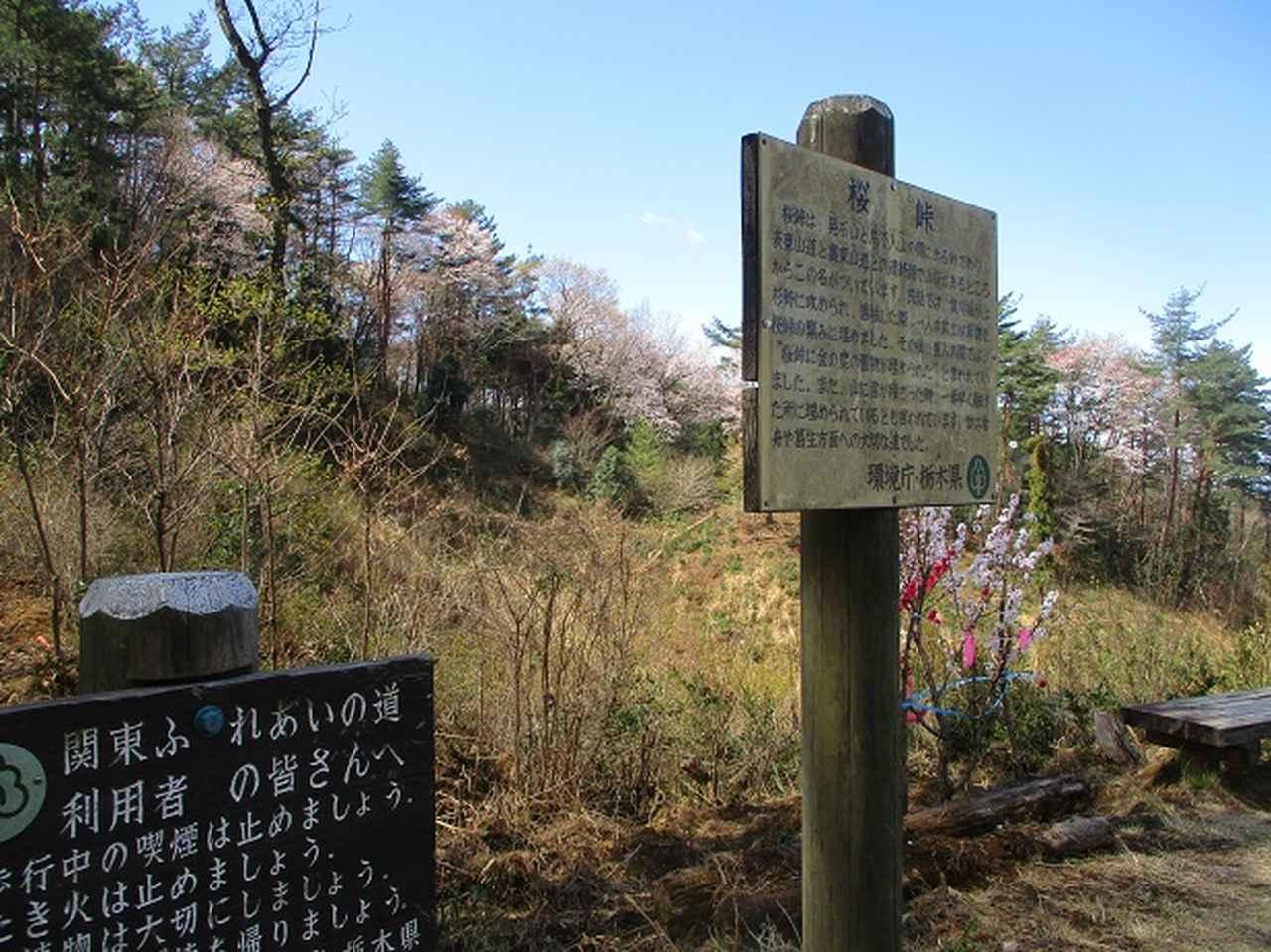 画像4: 4月9日に山旅会 晃石山から太平山 ツアーに行ってきました! にいって