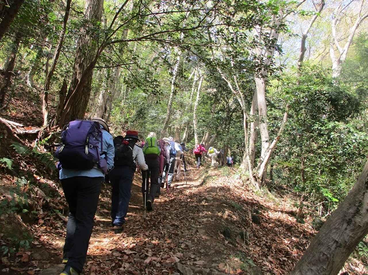 画像3: 4月9日に山旅会 晃石山から太平山 ツアーに行ってきました! にいって