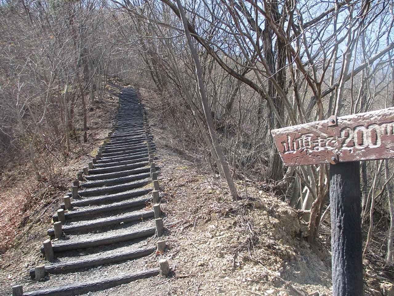 画像6: 4月5日に岡田ガイドのコースで群馬県の桜で有名な 「牛伏山」 へ行ってきました♪