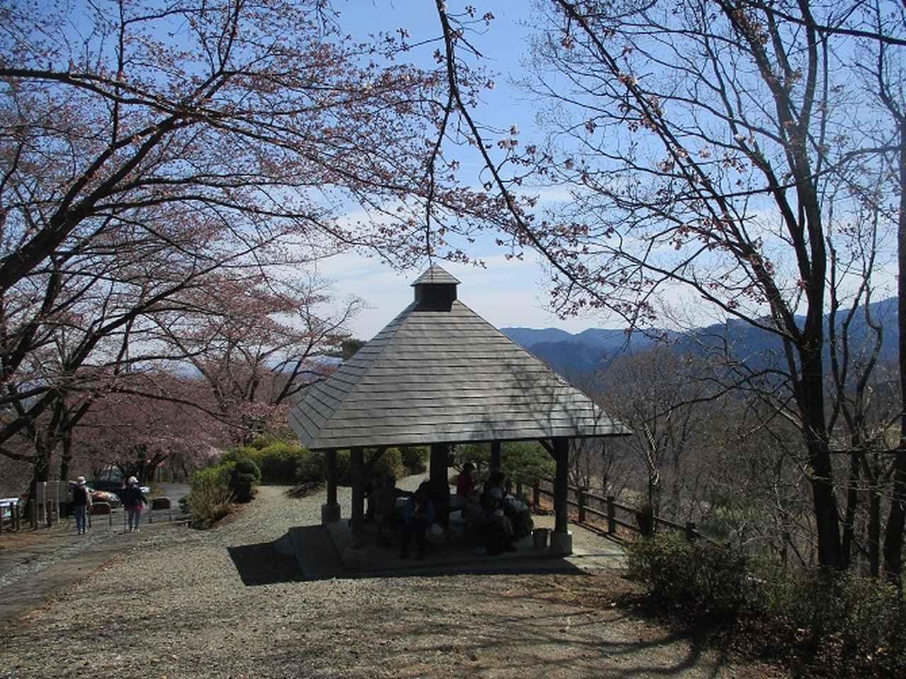 画像9: 4月5日に岡田ガイドのコースで群馬県の桜で有名な 「牛伏山」 へ行ってきました♪