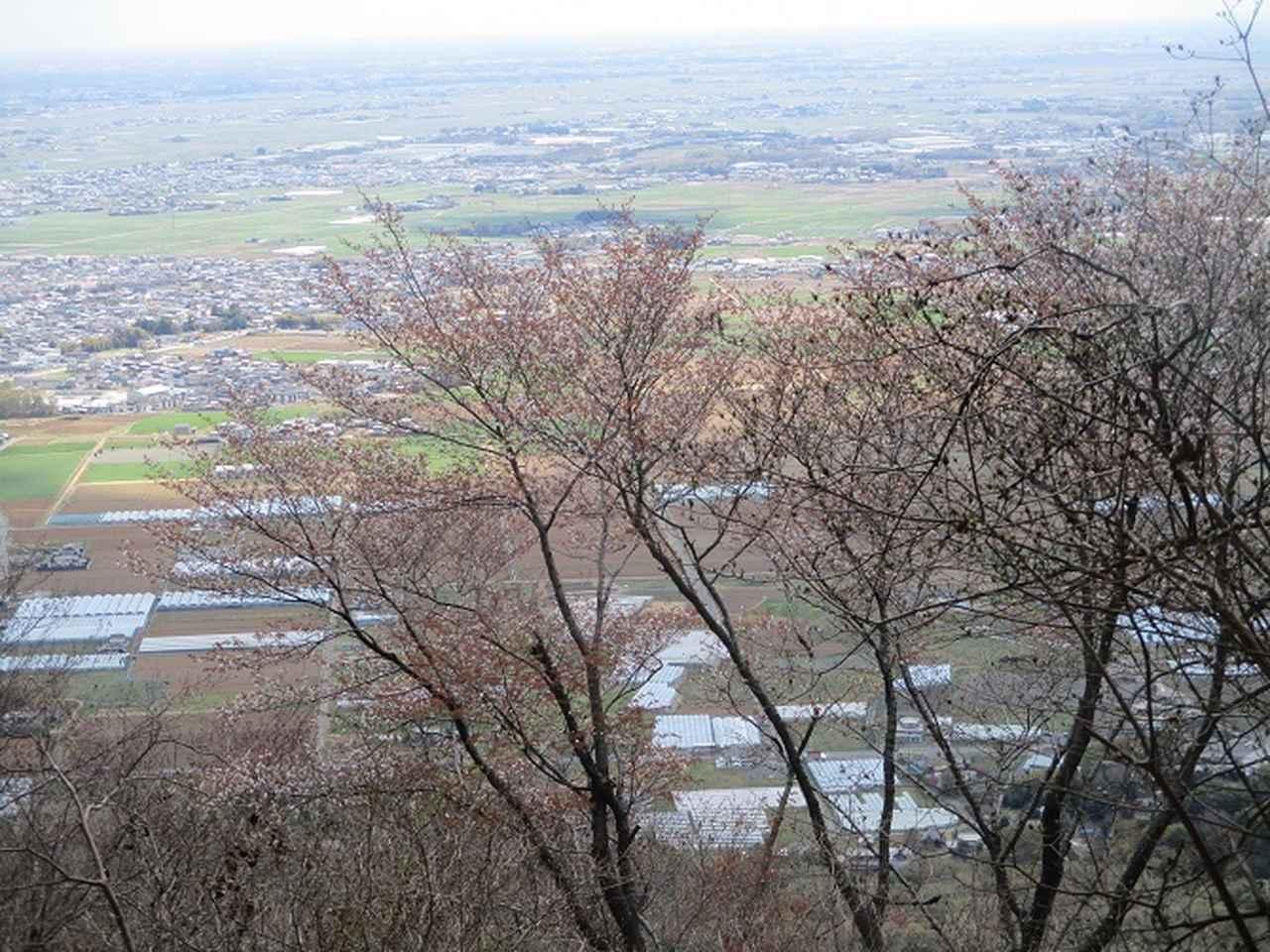 画像7: 4月9日に山旅会 晃石山から太平山 ツアーに行ってきました! にいって