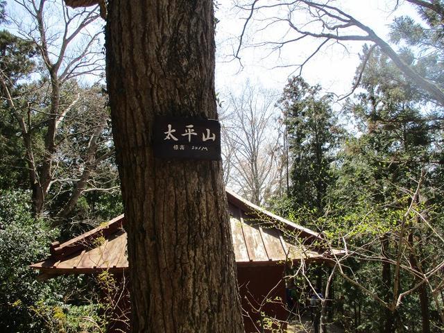 画像9: 4月9日に山旅会 晃石山から太平山 ツアーに行ってきました! にいって