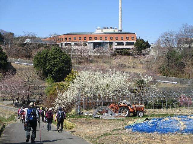画像14: 4月5日に岡田ガイドのコースで群馬県の桜で有名な 「牛伏山」 へ行ってきました♪
