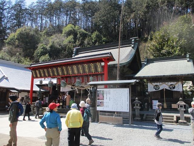画像10: 4月9日に山旅会 晃石山から太平山 ツアーに行ってきました! にいって