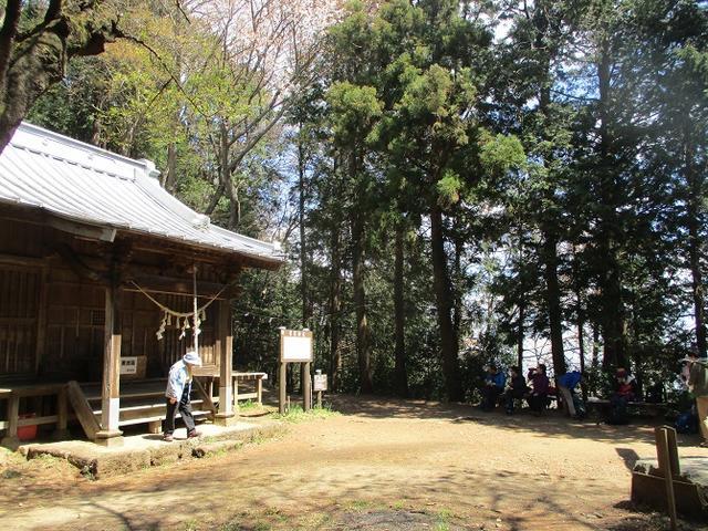 画像6: 4月9日に山旅会 晃石山から太平山 ツアーに行ってきました! にいって