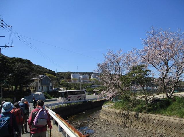 画像11: 本日は対馬・姫神山のツアー報告です!