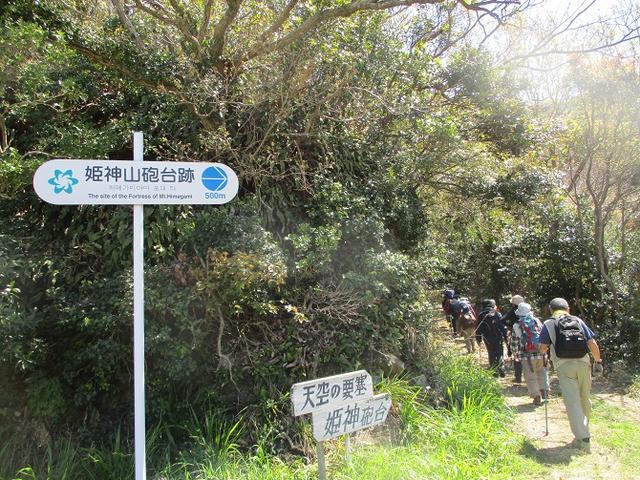 画像2: 本日は対馬・姫神山のツアー報告です!