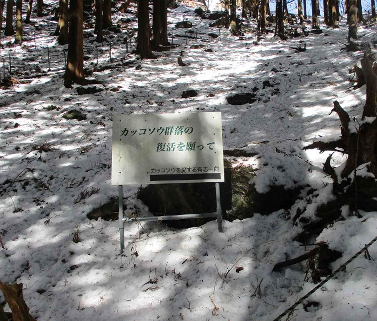 画像4: 4月の山旅会 鳴神山 ツアーの下見に行ってきました!