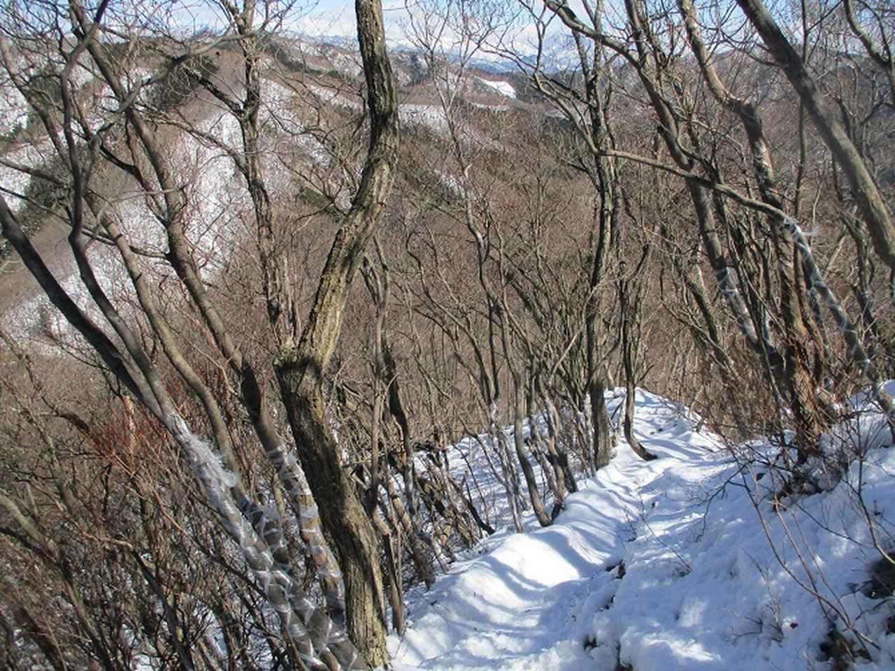 画像9: 4月の山旅会 鳴神山 ツアーの下見に行ってきました!