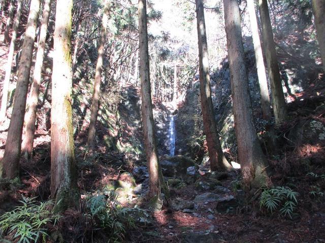 画像1: 4月の山旅会 鳴神山 ツアーの下見に行ってきました!