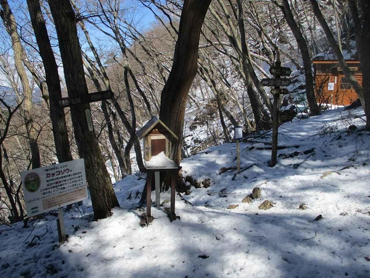 画像5: 4月の山旅会 鳴神山 ツアーの下見に行ってきました!