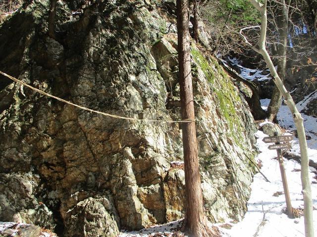 画像3: 4月の山旅会 鳴神山 ツアーの下見に行ってきました!