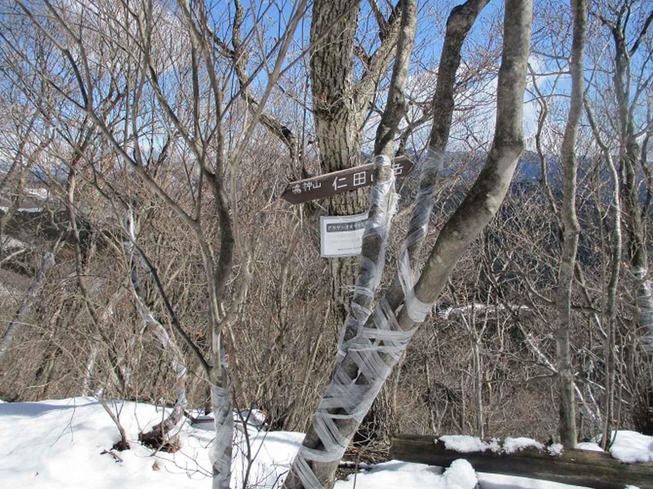画像7: 4月の山旅会 鳴神山 ツアーの下見に行ってきました!