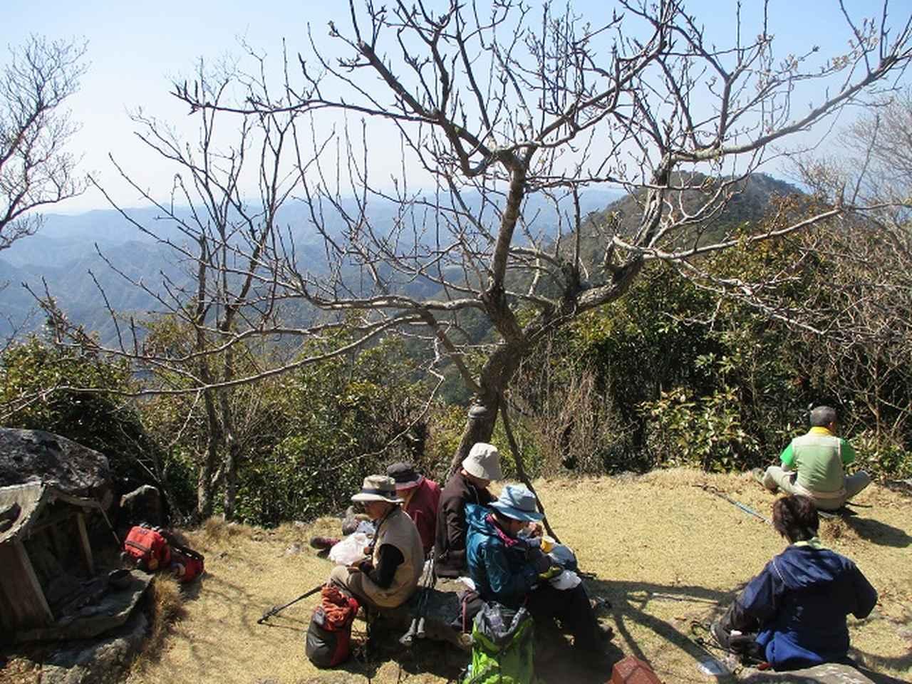 画像8: 【山旅会・登山ガイドこだわりツアー】添乗員からの便り・対馬の御岳へいってきました!