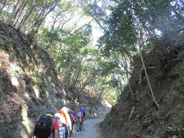 画像1: 対馬ツアー3日目は青空気持ち良い、 金田城山 へ行きました!