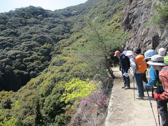 画像11: 対馬ツアー3日目は青空気持ち良い、 金田城山 へ行きました!