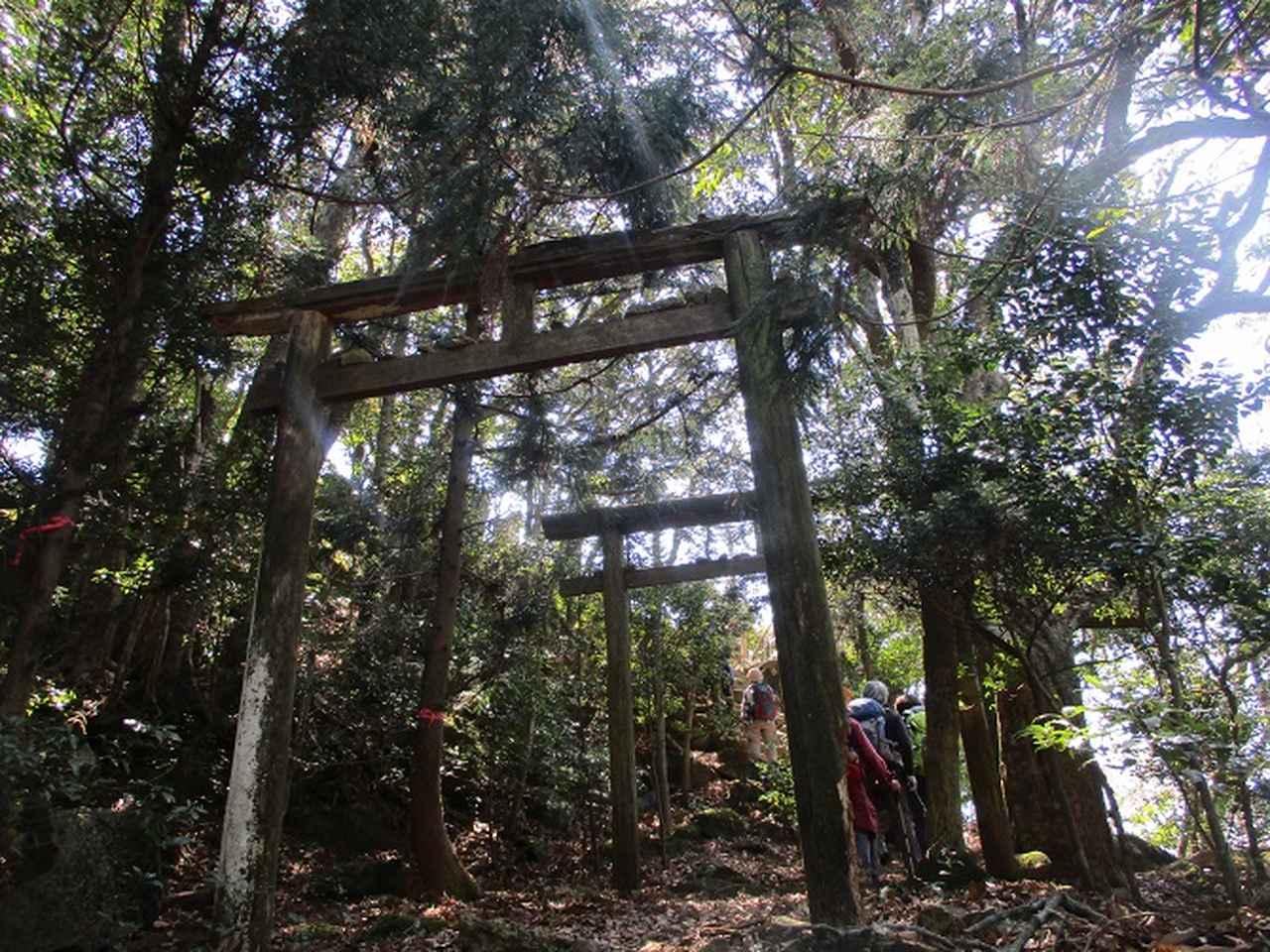 画像6: 【山旅会・登山ガイドこだわりツアー】添乗員からの便り・対馬の御岳へいってきました!