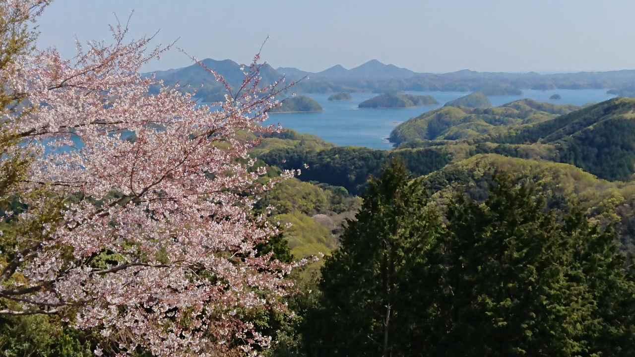 画像9: 【山旅会・登山ガイドこだわりツアー】添乗員からの便り・対馬の御岳へいってきました!