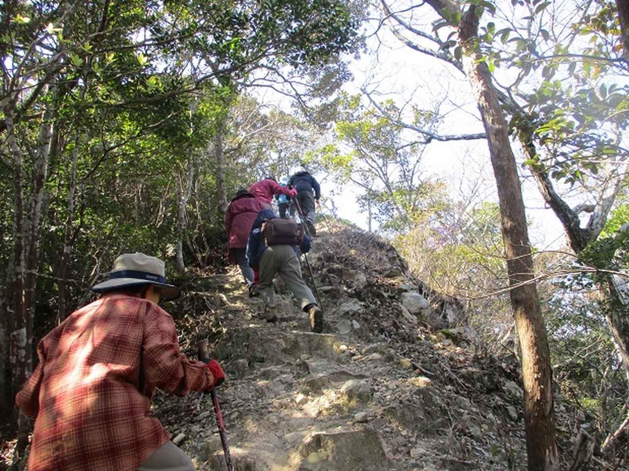 画像4: 対馬ツアー3日目は青空気持ち良い、 金田城山 へ行きました!