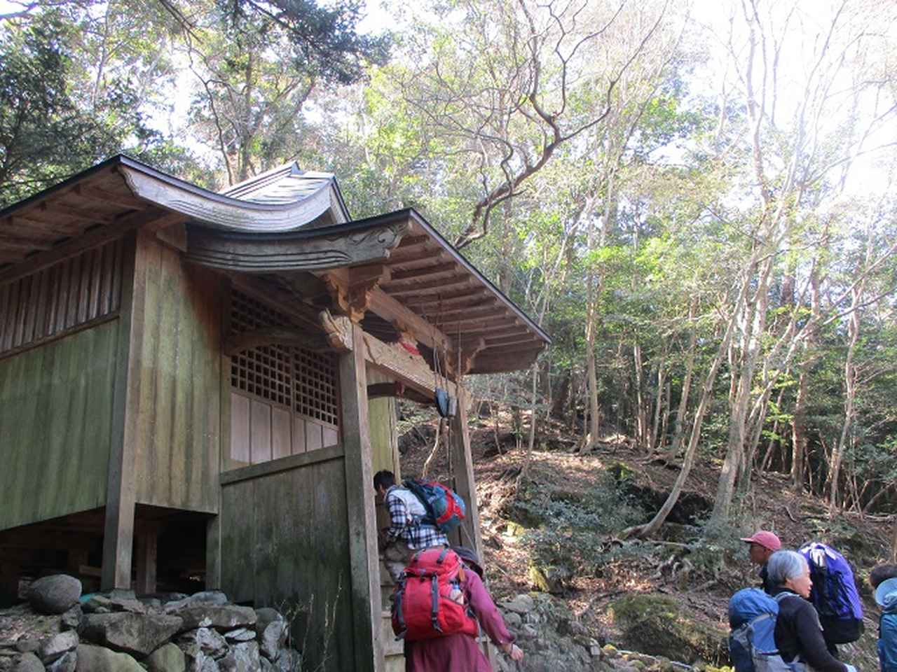 画像4: 【山旅会・登山ガイドこだわりツアー】添乗員からの便り・対馬の御岳へいってきました!