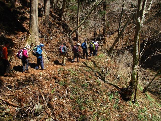 画像5: 4月15日に山旅会 「八溝山」 ツアーに行ってきました!