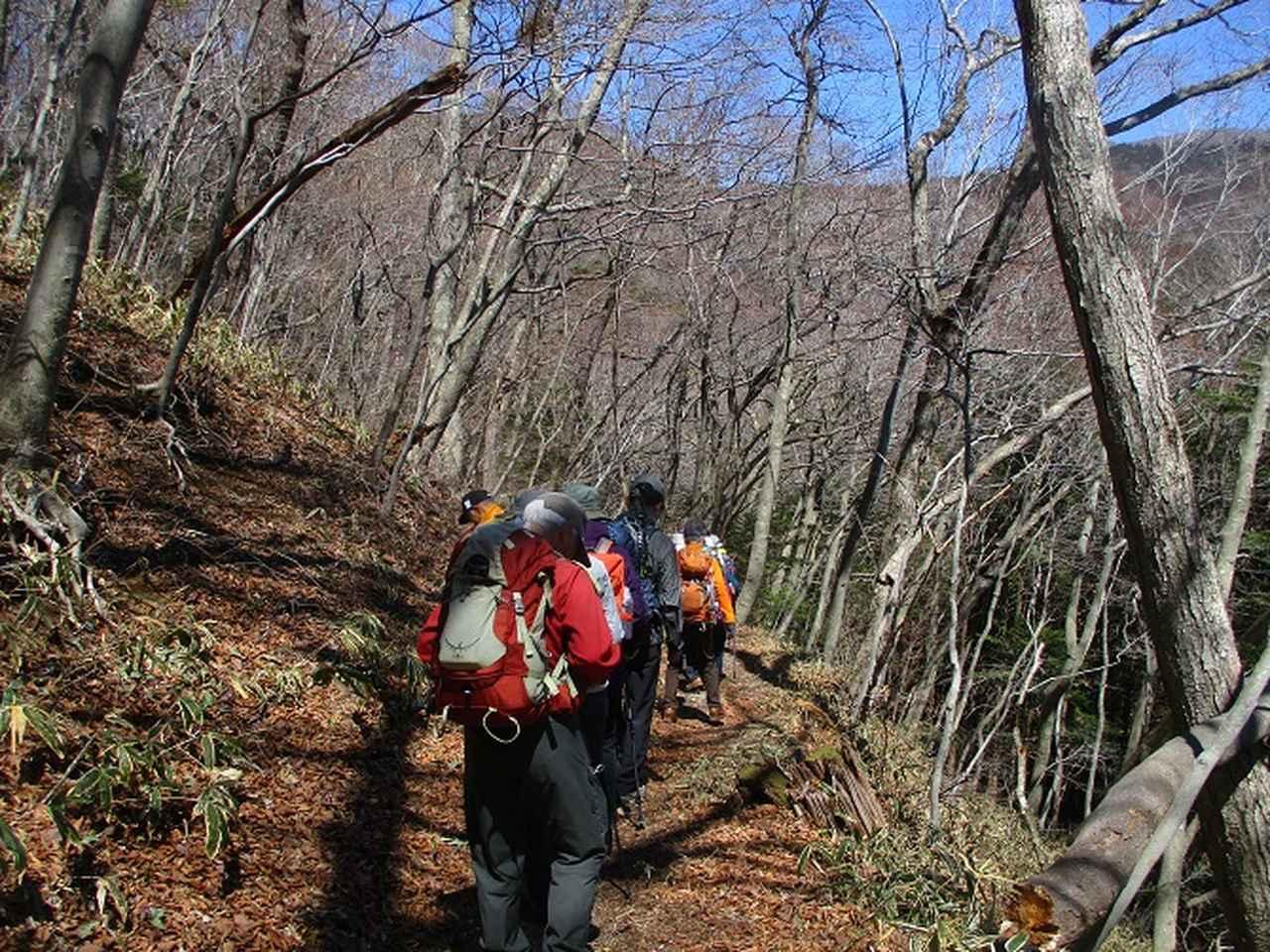 画像1: 4月15日に山旅会 「八溝山」 ツアーに行ってきました!