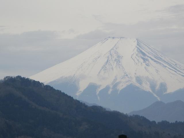 画像2: 4月17日に山旅会 百蔵(ももくら)山 のツアーに行ってきました!