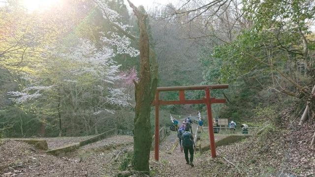 画像11: 4月6日に宮下ガイドと富岳十二景シリーズで 久鬼山 へ行ってきました♪