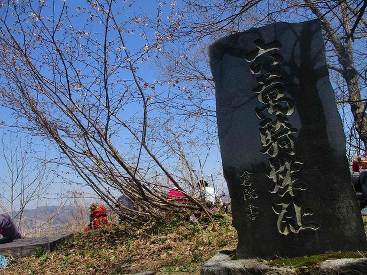 画像11: 4月15日に岡田ガイドとカタクリ咲く 六万騎山 へ行って来ました♪