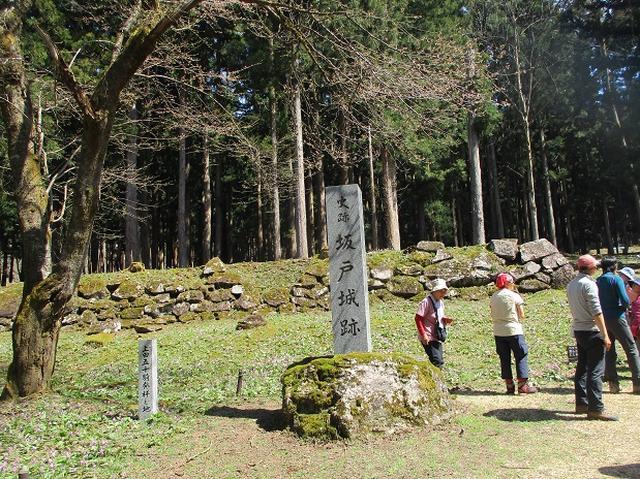 画像16: 4月15日に岡田ガイドとカタクリ咲く 六万騎山 へ行って来ました♪
