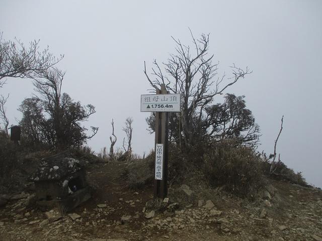 画像9: 来年の春の企画のネタを探して 九州・祖母山 に行ってきました!