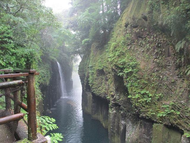 画像11: 来年の春の企画のネタを探して 九州・祖母山 に行ってきました!