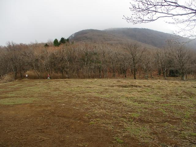 画像6: 来年の春の企画のネタを探して 九州・祖母山 に行ってきました!