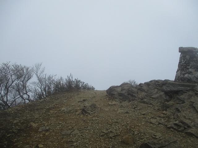 画像10: 来年の春の企画のネタを探して 九州・祖母山 に行ってきました!